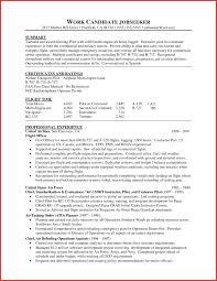 sle resume template pilot resume template best dissertation editing services au sle