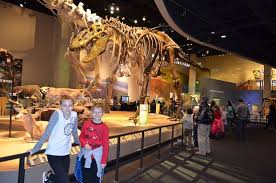 dinosaurs picture of perot museum of nature and science