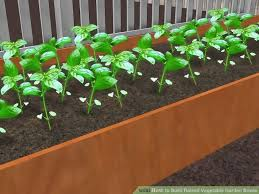 Making A Vegetable Garden Box by 588 Best Wikihow To Garden Images On Pinterest Gardening Plants