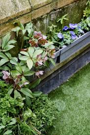 Plants That Dont Need Sunlight by Hardscaping 101 Artificial Grass Gardenista
