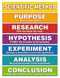 6th grade scientific method worksheet worksheets releaseboard