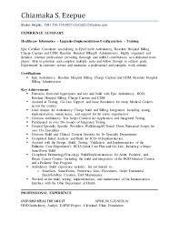 Health Informatics Resume Chiamaka Ezepue Resume
