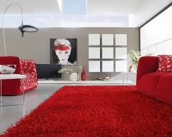 fauteuils rouges idée déco salon en 30 photos sympas embellir espace idee