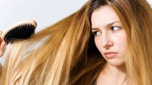 images of hair are you worried about thinning hair we ve got you stuff co nz