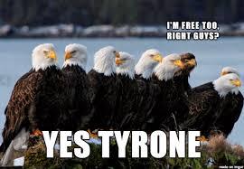 Freedom Meme - freedom bird album on imgur