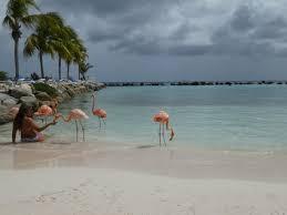 Renaissance Aruba Ocean Suites Floor Plan Review Top 10 Hotel Visits Of 2016 Sophie U0027s Suitcase
