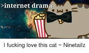 Internet Drama Meme - internet drama i fucking love this cat ninetailz meme on esmemes com