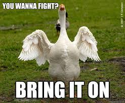 Fight Meme - you wanna fight bring it on wanna fight quickmeme