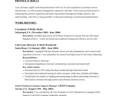 Resume Examples Customer Service for Objective with Work History     Dawtek Resume and Esay