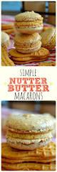 the 25 best nutter butter ideas on pinterest nutter butter