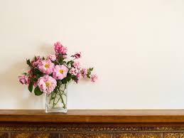 How To Arrange Indoor Plants by Indoor Plants Ideas Guides U0026 Handy Tips