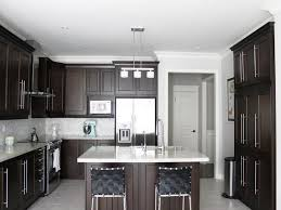 painted kitchen cabinets ideas pictures of painted kitchen cabinets awesome homes stunning