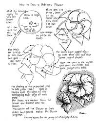 pictures how to draw worksheet drawing art gallery