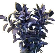 blue and purple flowers blue and purple flowers for wedding