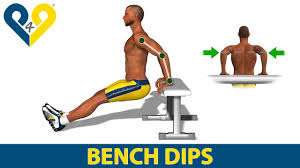 bench tricep bench bench press exercises for biceps and triceps
