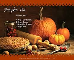 pumpkin pie diffuser blend essential oils place http www