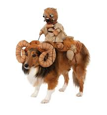 Ghost Dog Halloween Costumes by 12 Perfect Halloween Costumes For Your Dog On Amazon Prime Right