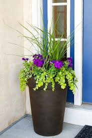 planting a perfectly proportioned garden vase three easy steps