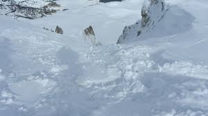 Snow Rock Covent Garden by Heli Skiing