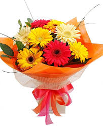 gerbera bouquet bright gerbera bouquet flower paradise melton mowbray