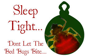 Dont Let The Bed Bugs Bite Nighty Night Keep The Bed Bugs Away This Holiday