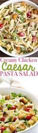 Creamy Pasta Salad Recipes Best 25 Chicken Caesar Pasta Salad Ideas Only On Pinterest