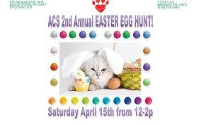 east egg easter egg hunt animal care sanctuary