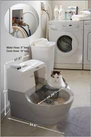 Best Odor Eliminator For Bathroom Best 25 Litter Box Smell Ideas On Pinterest Litter Box Diy