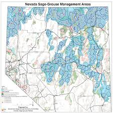 Nevada City Map References