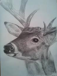 deer head by megex on deviantart