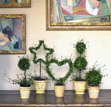 Topiaries Plants - angel vine shaped topiary other topiary plants from curb