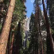 Yosemite Lodge At The Falls Front Desk Phone Number Yosemite National Park Lodging U0026 Year Round Activities