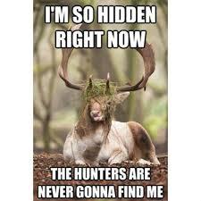 Bow Hunting Memes - funnier meme hunting