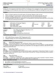 bca resume format for freshers pdf merger sle resume for freshers resume format for freshers professional