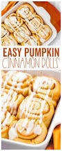 Toaster Strudel Designs Pumpkin Cinnamon Roll Recipe Made To Be A Momma