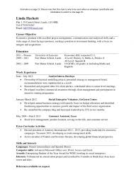 Free One Page Resume Template Resumes Examples Free Resume Template And Professional Resume