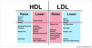 high cholesterol high hdl low triglycerides cardiac health