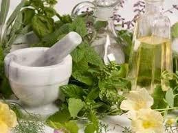 ramuan obat kuat herbal alami