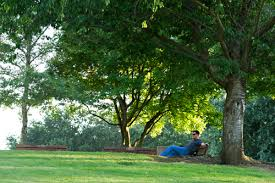 List Of Botanical Gardens Uc Davis Arboretum Makes 10 Most Beautiful Botanical Gardens List