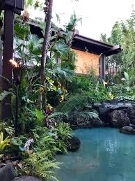 why you shouldn u0027t stay at disney u0027s polynesian resort mommy points