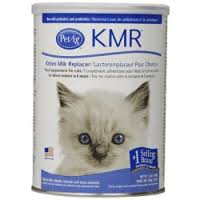 cats afterpains cat pregnancy pre natal and post natal care what you need to know now