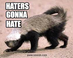 Honey Badger Memes - honey badger don t give a shit curio pinterest honey badger