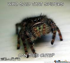 Cute Spider Meme - cute spider by al3xc0j93 meme center