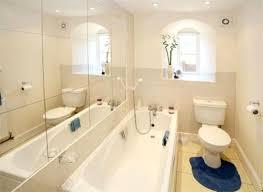 neat bathroom ideas breathtaking bathroom decorating ideas neat furniture small