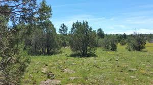 tiny home living pinetop arizona show low arizona