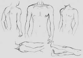 male body practice by xxmukuchanxx on deviantart