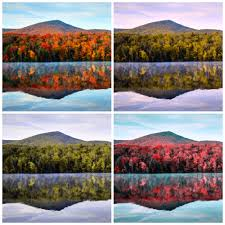 what color blind looks like 28 images this is what it looks