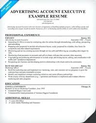 resume sles for advertising account executive description advertising project manager resume