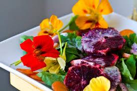 organic edible flowers foraging for edible flowers kate gardner nutrition kate gardner