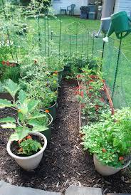 indoor outdoor gardener explore brooklyn